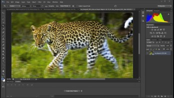 The Industry-Standard Photoshop CS6: Sleek, Powerful, and Fast