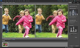 See 20 industry reviews for Adobe Photoshop Elements