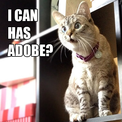 Surprised Cat Can Has Adobe with Holiday Deals!