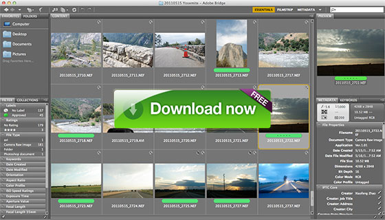 it s true adobe bridge cc is completely free for everyone for life